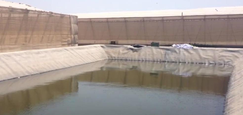 Un hombre y una mujer mueren en Níjar tras lanzarse a una balsa de riego para salvar a un perro