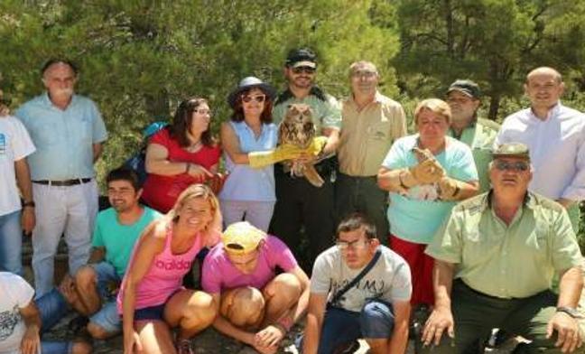 Tres cernícalos y un búho vuelan libres en el Parque Natural Sierra María-Los Vélez