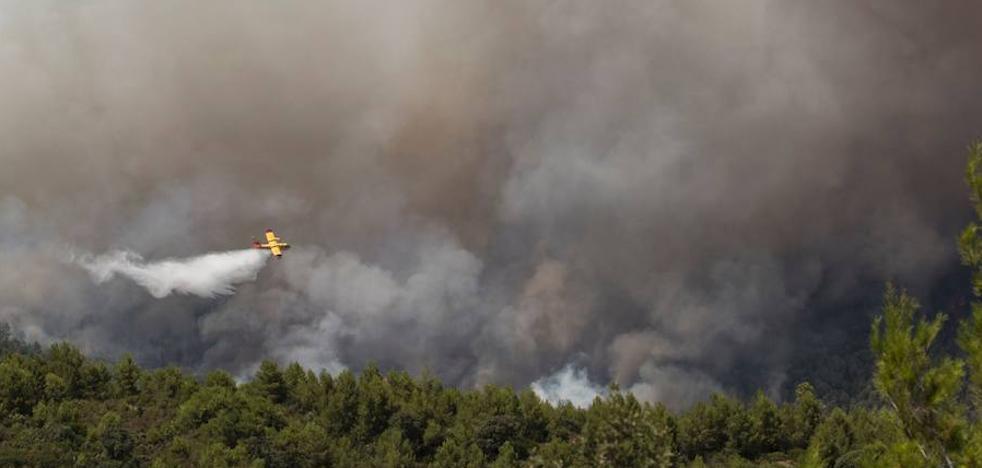 Más de 1.300 hectáreas calcinadas en un incendio forestal en Albacete