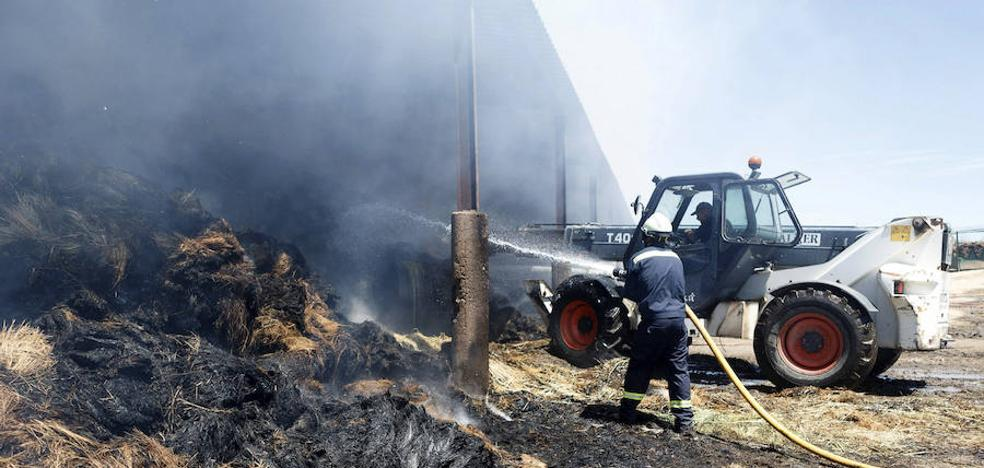 Arden 2.500 hectáreas en el incendio de Zamora, que fue intencionado
