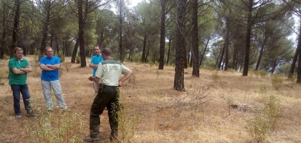 La Junta proyecta una nueva zona de acampada controlada en Despeñaperros