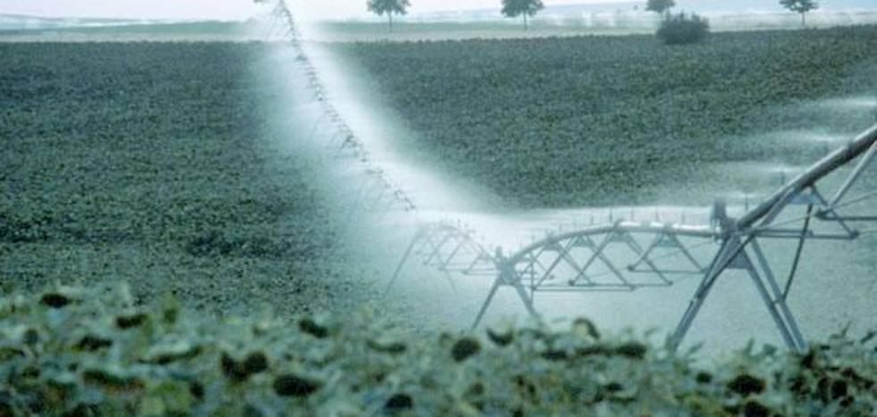 Agricultura habilita más de 96 millones de euros para modernizar regadíos