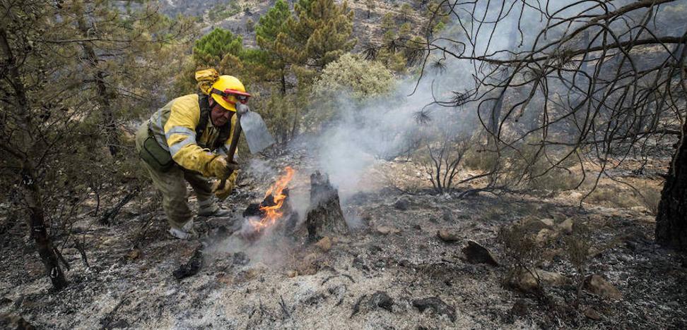 Acotado el incendio de Albacete, la mayoría de los vecinos desalojados ha regresado a sus casas