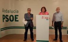 """El PSOE cree que la visita a Granada de Rajoy y de siete ministros """"no solucionó nada"""""""
