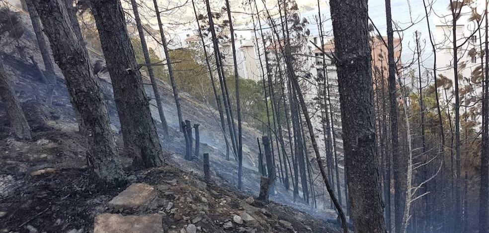 El fuego arrasa dos hectáreas de pinar en la playa de Velilla