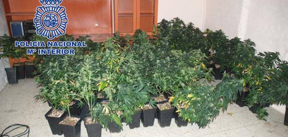 Aumentan los delitos de índole sexual y de drogas en la provincia
