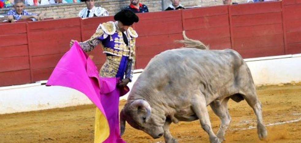 Magistral Hermoso de Mendoza