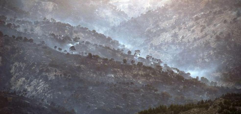 A mediados de octubre comenzará la segunda fase para restaurar la zona del incendio de Quesada