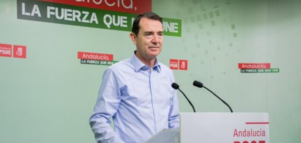 El PSOE exige a García Tejerina medidas para evitar más crisis de precios como la de enero