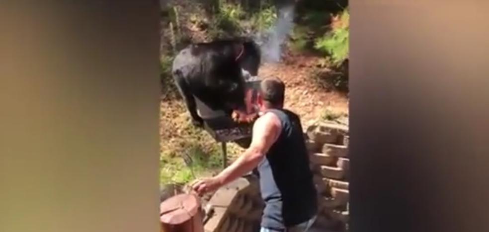 Dos hombres se enfrentan a un 'Oso Yogui' que les quiere robar su barbacoa