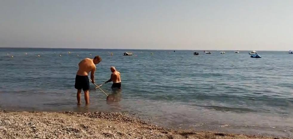 Limpian la playa de Cotobro de Almuñécar a golpe de 'salabre'