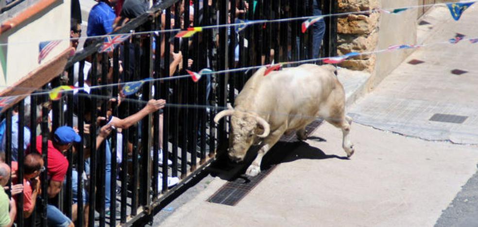 La familia de un joven fallecido en un encierro reclama 400.000 € a un Ayuntamiento de Castellón