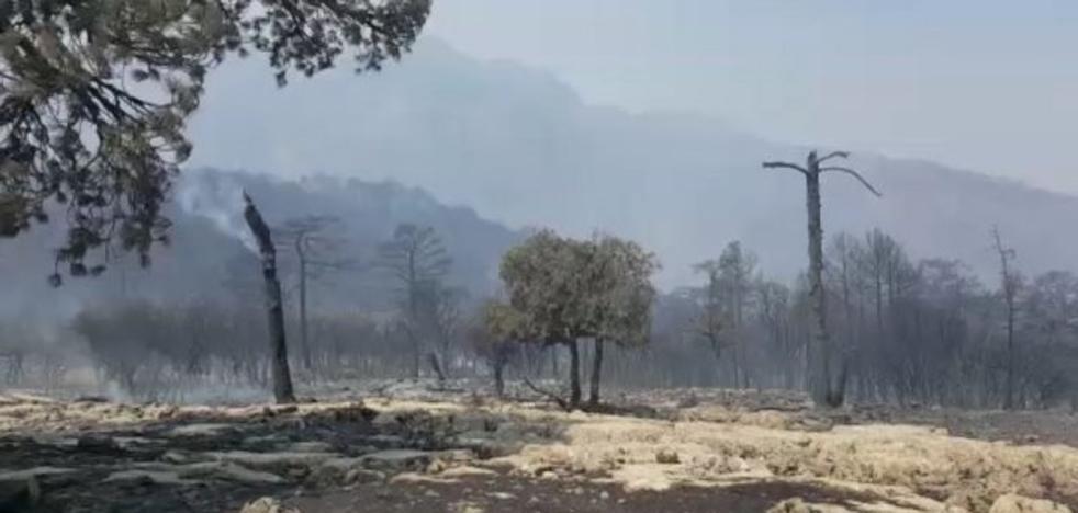 Se cumplen dos semanas del incendio de Segura sin que se dé por extinguido
