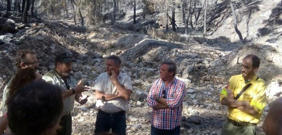 Continúa la investigación para encontrar al autor del fuego en la Sierra de Segura
