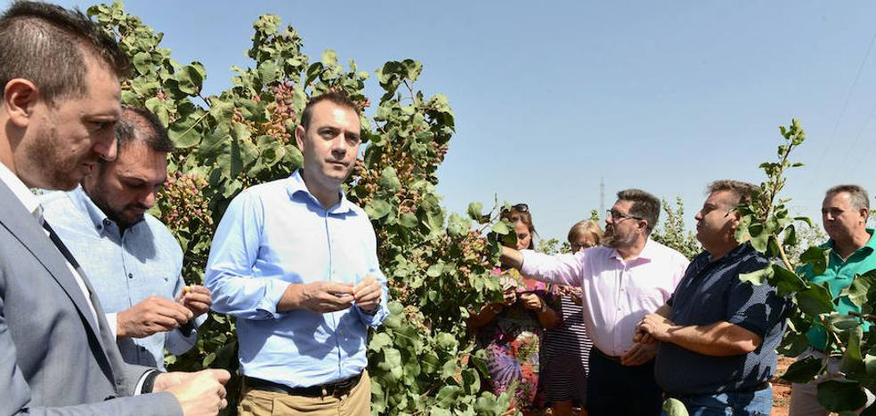 Los grupos de desarrollo de Granada impulsarán el empleo y la innovación rural con 35,6 millones