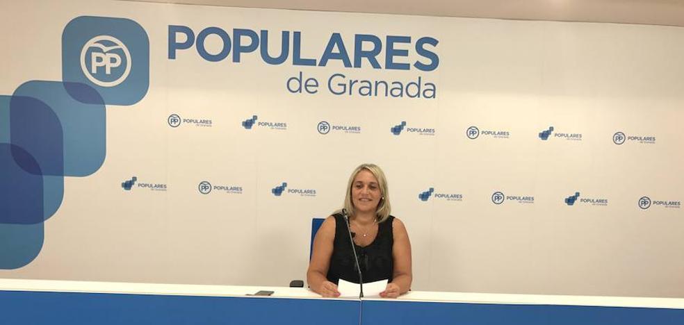 """El PP mantiene que la Diputación ha perdido 56 millones de euros en fondos europeos por su """"nefasta gestión"""""""