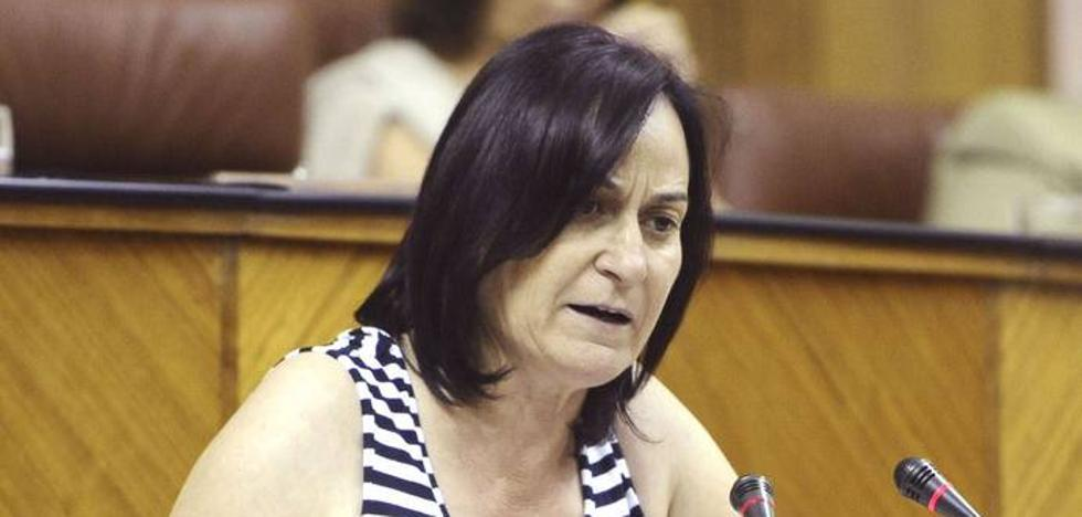 Rosalía Martín no optará a lidera IU después de 14 años al frente del partido