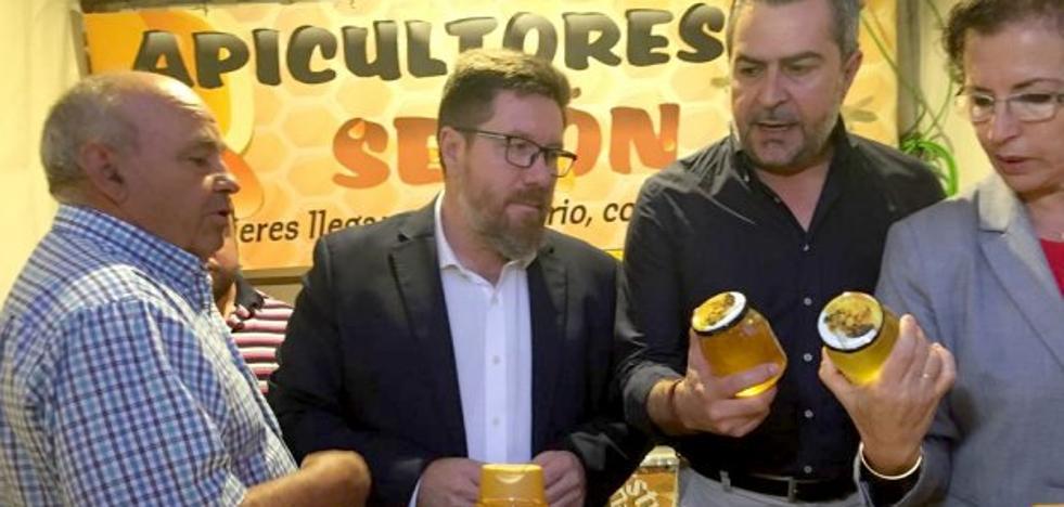 Agricultura repartirá casi 245.000 euros a 176 apicultores de la provincia en ayudas