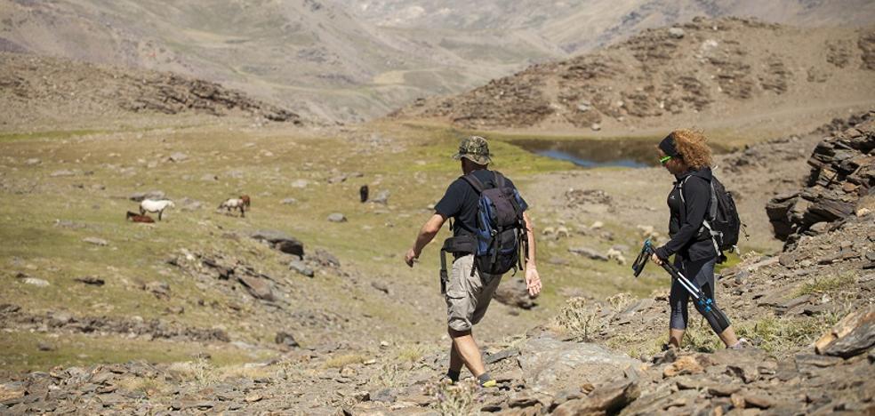Sierra Nevada se consolida como destino veraniego