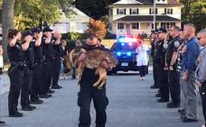 Así se despidieron de este perro policía antes de sacrificarlo por un cáncer terminal