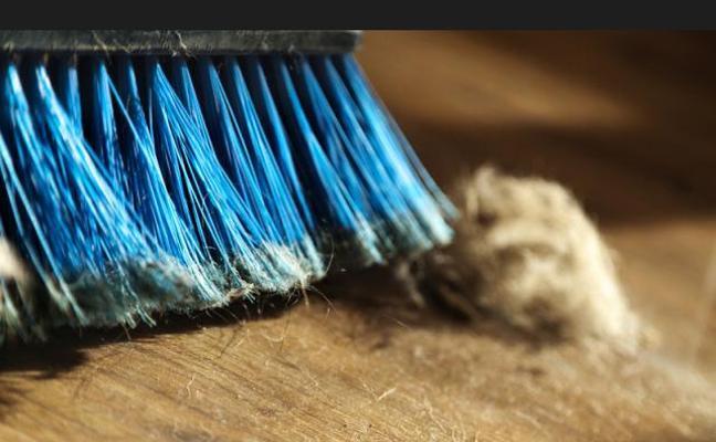 Un estudio demuestra que la presencia de polvo en casa engorda
