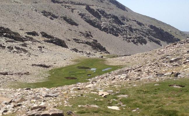 Estudian la evolución ambiental de Sierra Nevada para definir nuevas medidas de conservación