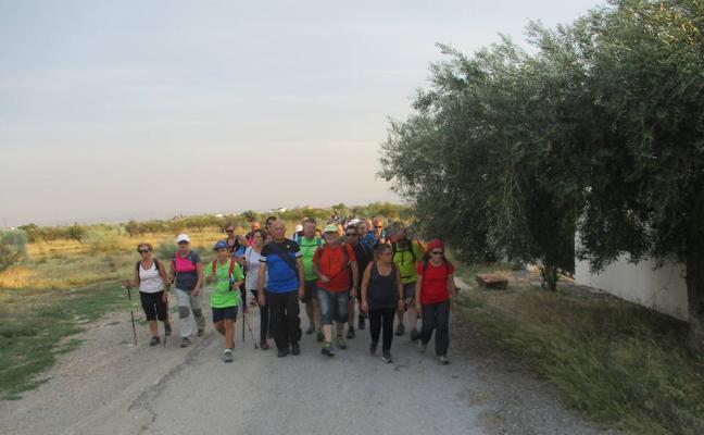 'Senderos de Luna Llena' reúne a un centenar de participantes en la Ruta del Aceite de Taberno