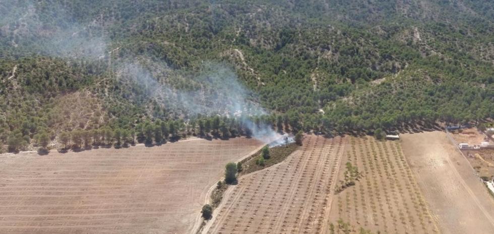 Extinguido el incendio forestal en un paraje de Padul