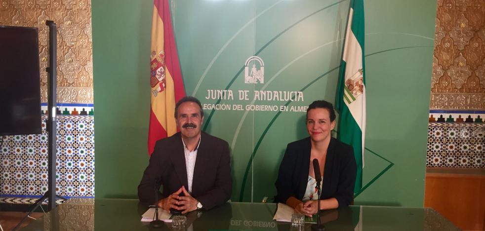 El Museo Arqueológico de Almería registró un 31,2% más de usuarios el pasado verano