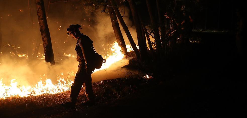 Sube a 31 la cifra de muertos por incendios forestales en California