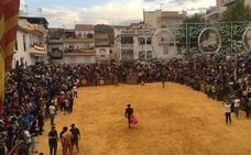La Peza celebra sus encierros declarados de Interés Turístico en Andalucía