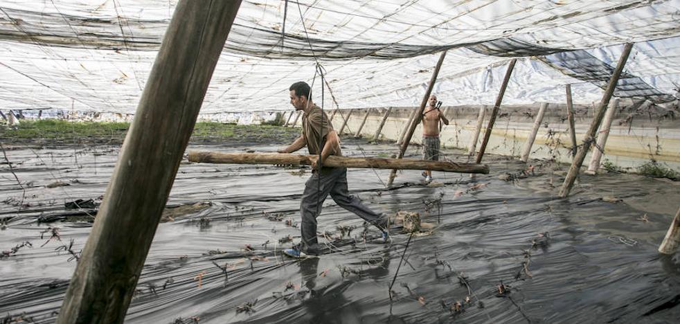 Costas paraliza el derribo de invernaderos de La Rábita y El Pozuelo hasta tener la orden judicial