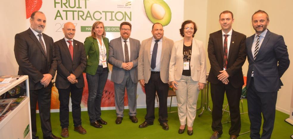 Más de 400 nuevas hectáreas de invernadero en Andalucía oriental