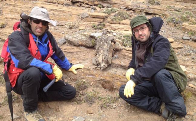 Un equipo internacional de científicos desvela el misterio del origen del oro