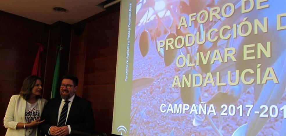 La producción de aceite de oliva en Jaén puede caer un 28,5% por la falta de lluvias
