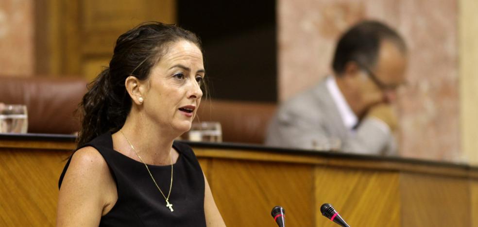El PP pide «mayor celeridad y más dinero para la rehabilitación del castillo de Vélez-Blanco