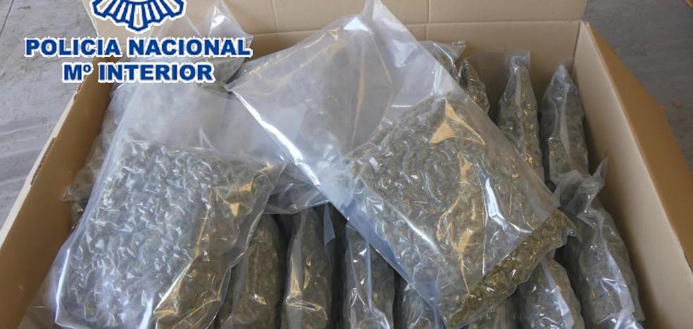 Cae en Granada una organización criminal que traficaba con marihuana entre España y Holanda