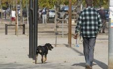 La ordenanza que limita a cinco los animales en casa se aprobará hoy