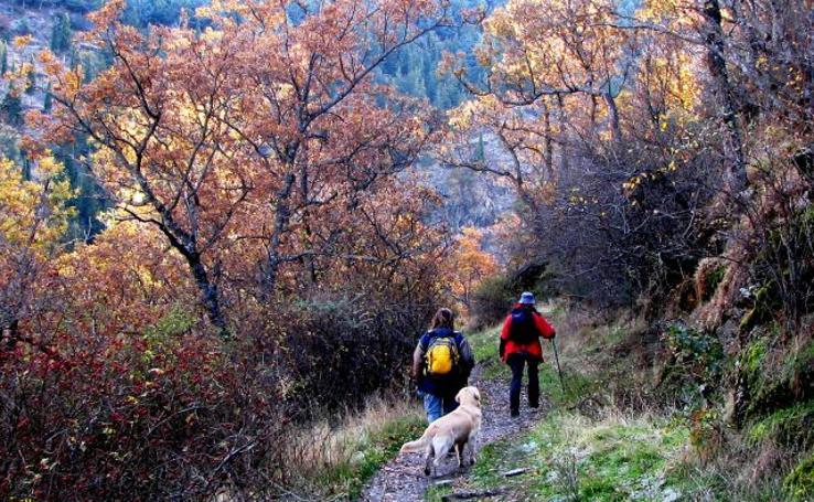 Las 5 rutas con más encanto para disfrutar del otoño en Granada