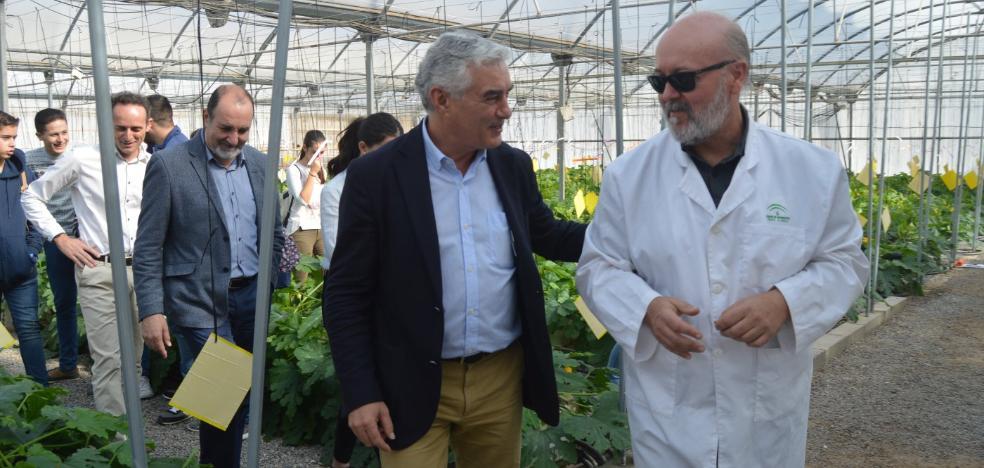 IDEAL entrega sus I Premios 'Almería Gourmet'