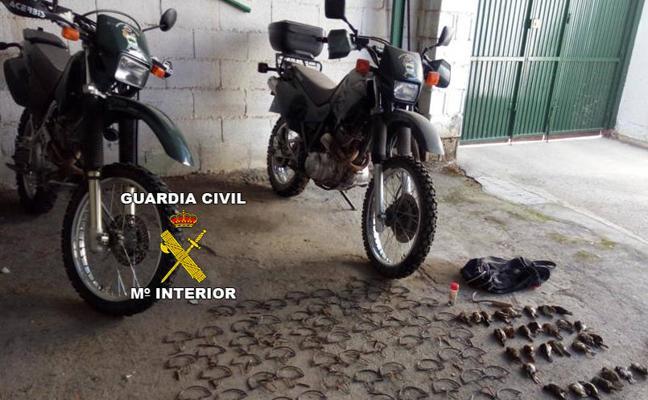 Dos investigados en Mancha Real y Torredelcampo por cazar aves insectívoras con artes prohibidas