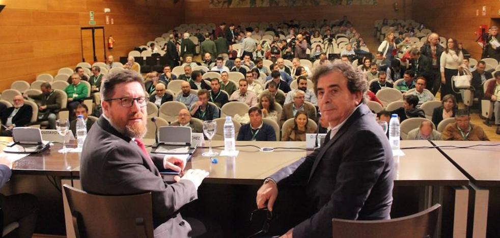 La Junta certifica la ausencia de la Xylella en Andalucía con la realización de más de 6.000 análisis