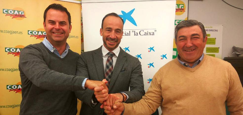 COAG y La Caixa firman un acuerdo para incentivar la contratación de mujeres en la campaña de aceituna en Jaén