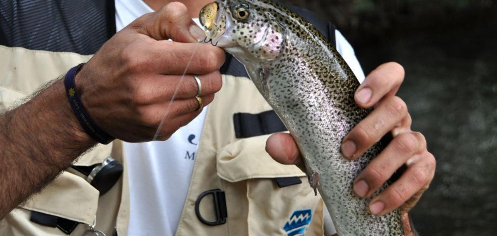 La pesca jienense volverá a ser lo que fue