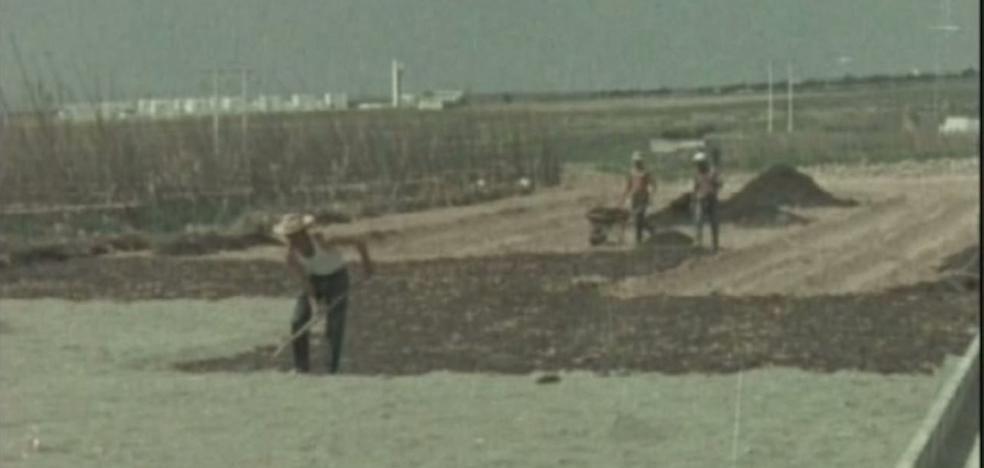 Más de 30.000 hectáreas de invernadero: herencia 'del piloto'