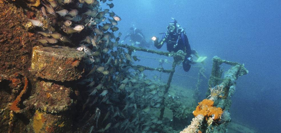 El impactante hallazgo marítimo que sorprende al mundo