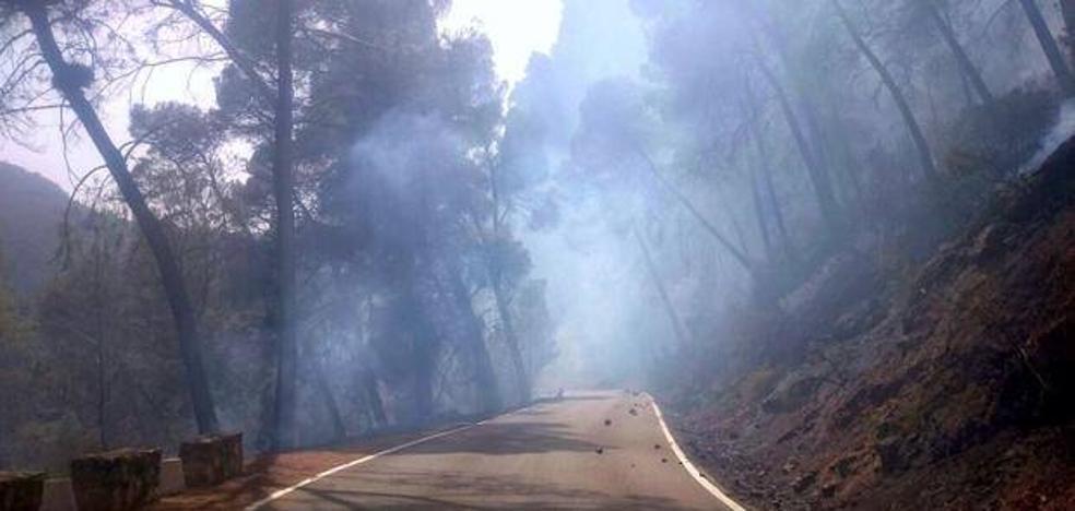 La provincia registra 165 incendios forestales hasta octubre y el 86,6% se queda en conato