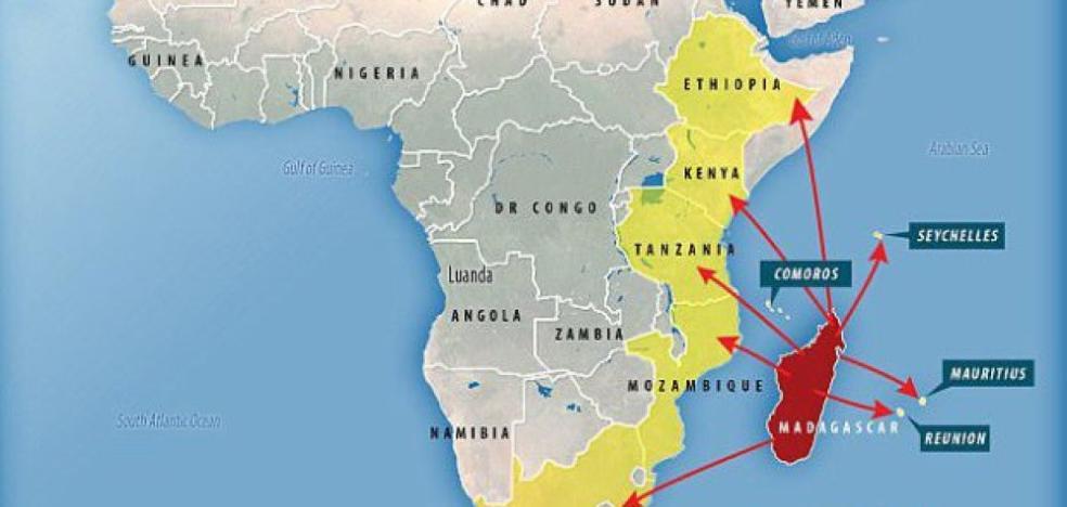 Alerta máxima por un mortal brote de peste: 10 países afectados
