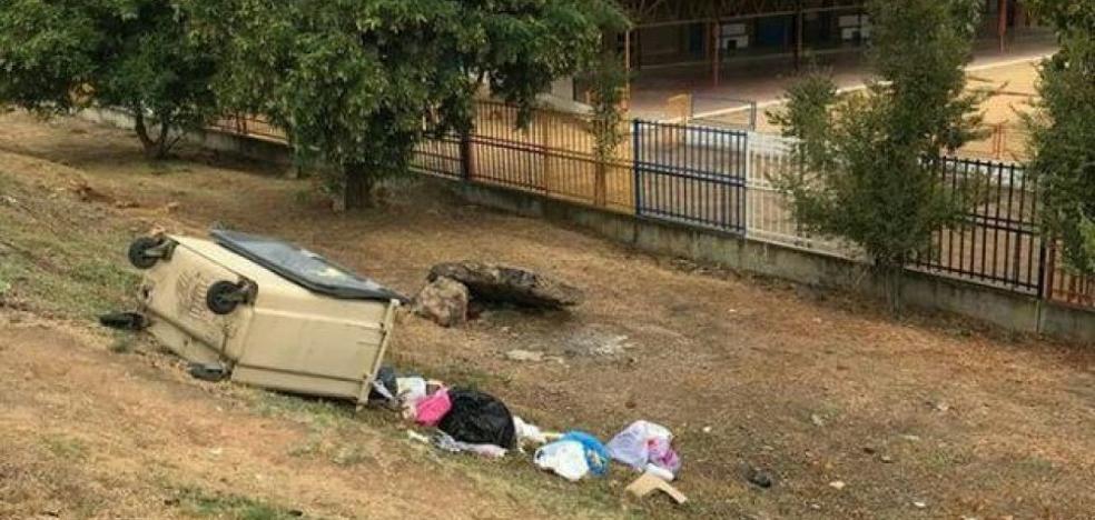 Suspendidas las clases de un colegio andaluz por una plaga de ratas