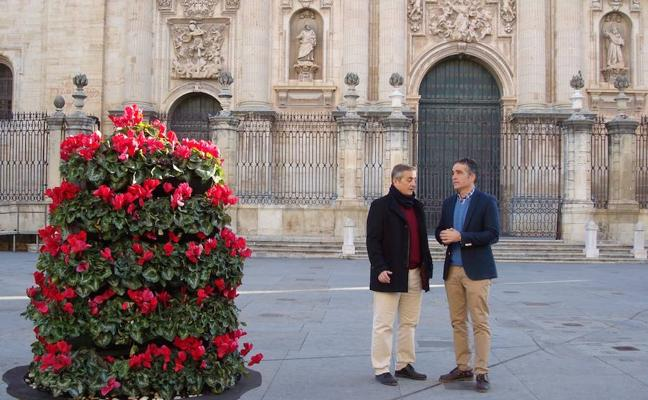 El Ayuntamiento inicia la campaña floral de Navidad con 4.000 plantas y pide civismo